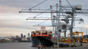 Container boat and cranes at dawn